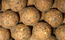 хлебные шарики на карпа