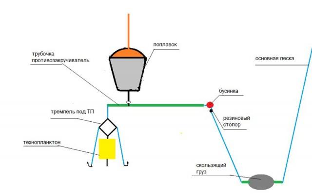 планктон для толстолобика своими руками рецепты