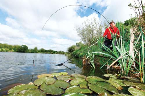 ловля рыб