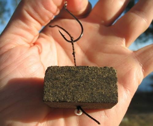 макушатник на карпа