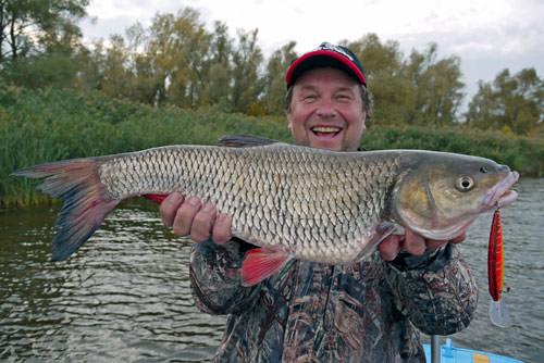 рыбак поймал голавля