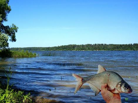 где рыбалка на истре