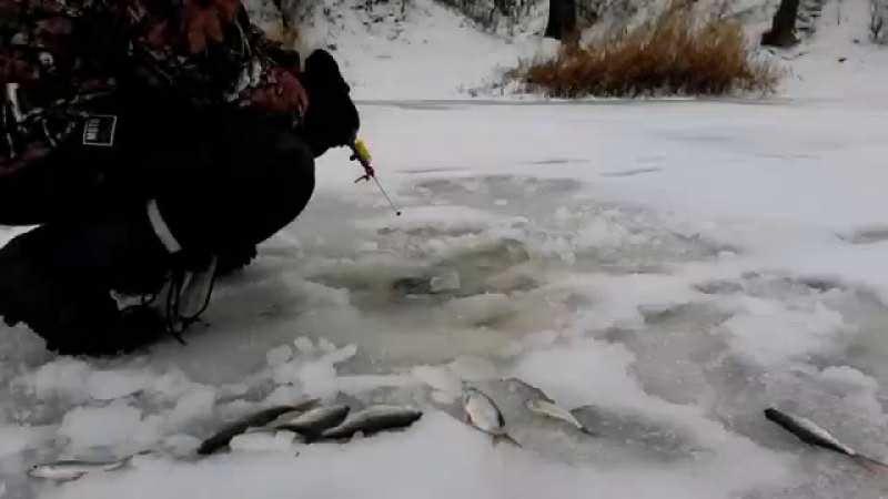 Ловля рыбы зимой на электронную удочку