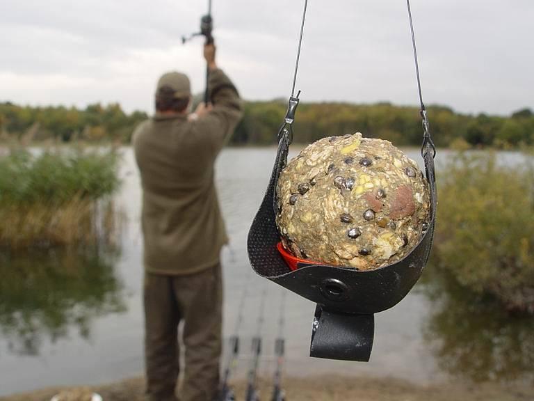 Чем прикормить карася для ловли