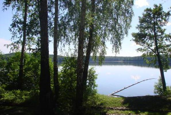 Удочка на берегу озера