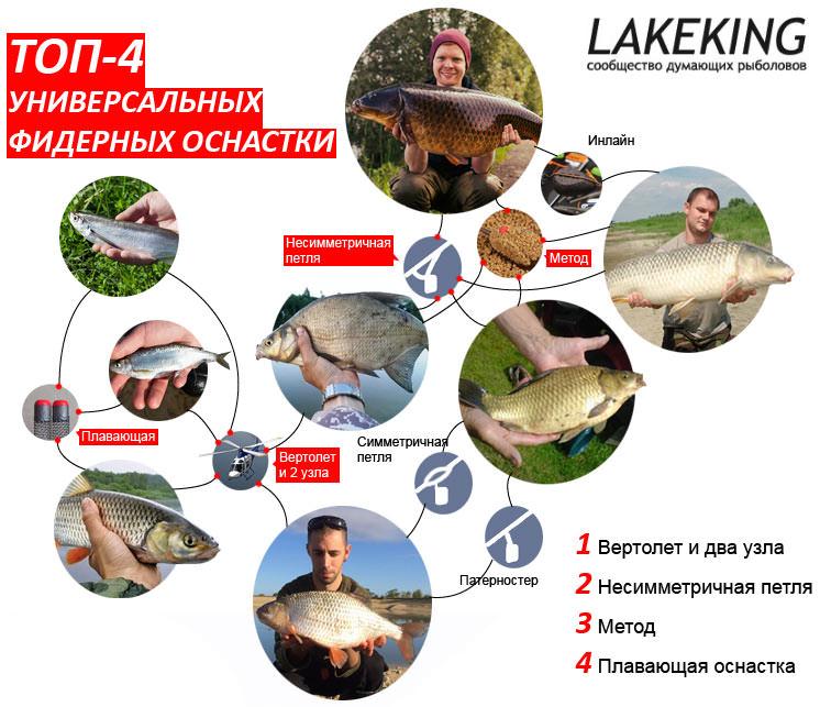 Лучшие фидерные оснастки - аналитика от Lakeking.ru