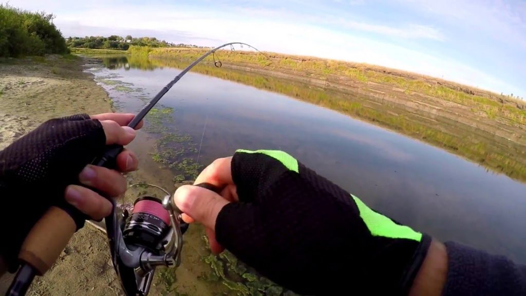 Процесс подсечки рыбы спиннинговым удилищем